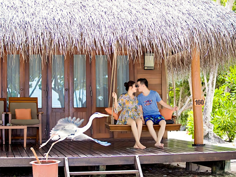 Honeymoon Medhufushi Island Resort Official Website